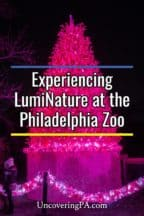 LumiNature at the Philadelphia Zoo in Pennsylvania