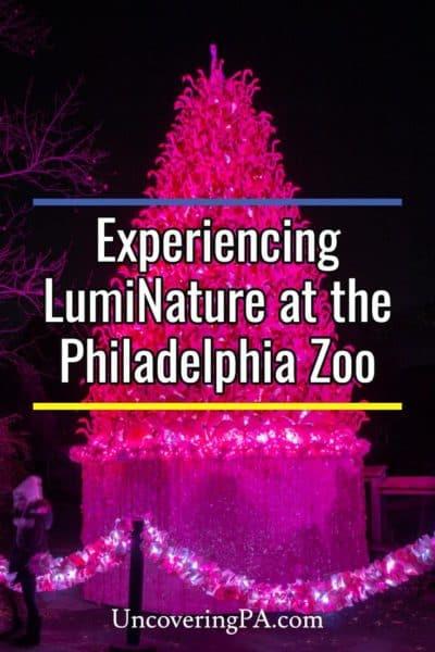 LumiNature at the Philadelphia Zoo in Pennsylvania