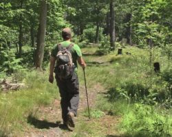 Pennsylvania Hiking Books: 5 Great Options to Get You Out in the Keystone State