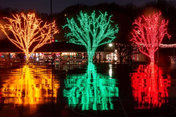 Lights reflecting on the wet ground at Holiday Lights on the Lake near Altoona PA