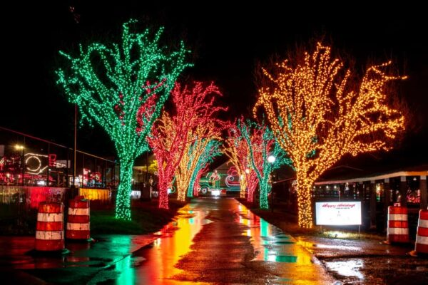 Trees lit in Holiday Lights on the Lake in Altoona Pennsylvania