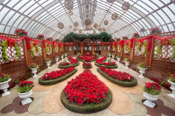 The Broderie Room during the Winter Flower Show at Phipps Conservatory in Pittsburgh