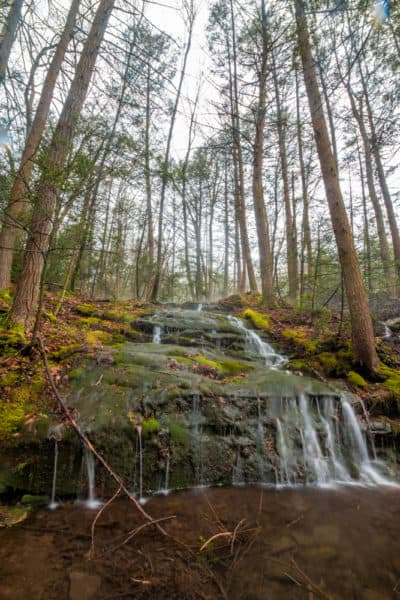 Waterfall on Paddy Run in State Game Lands 260 in Luzerne County PA