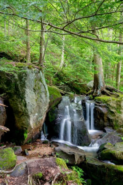 Waterfall on the Bent Run Trail in Allegheny National Forest