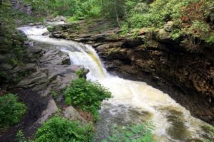 How to Get to Nay Aug Falls in Scranton
