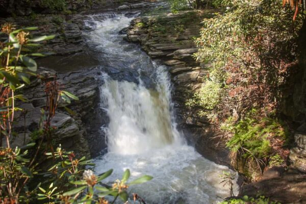 View of Nay Aug Falls from the top of Nay Aug Gorge in Scranton Pennsylvania