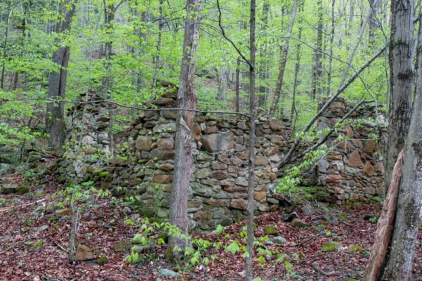 Stone foundations in the McIntyre Wild Area of Lycoming County Pennsylvania