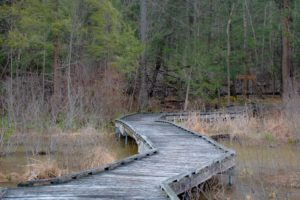 Hiking the Trails at the Incredible Shaver's Creek Environmental Center