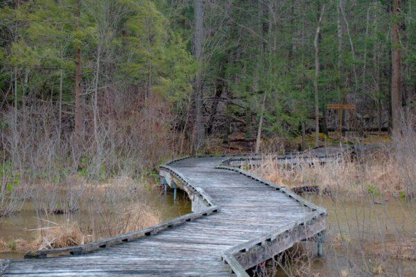 Hiking at Shaver's Creek Environmental Center in Huntingdon County PA