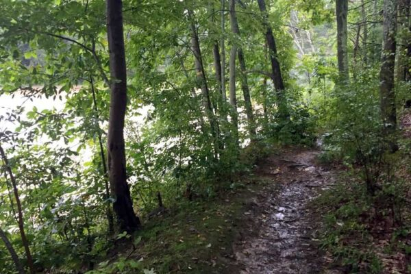 Trail to Nelson Falls in Cowanesque Lake Recreation Area in the Pennsylvania Wilds