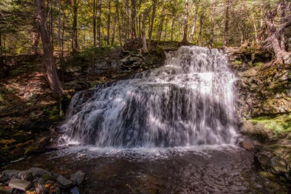 Hiking to Sawkill and Savantine Falls in Delaware State Forest