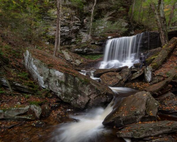 B Reynolds Falls in Ricketts Glen State Park