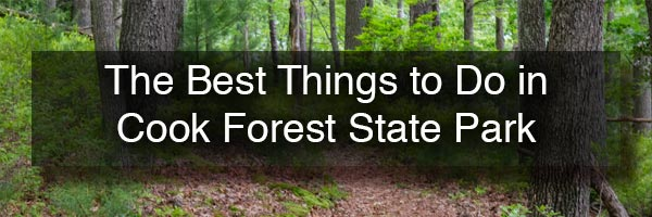 The best things to do in Cook Forest State Park