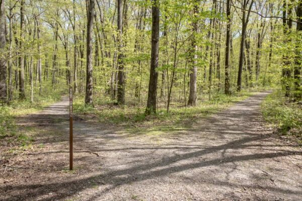 Trail juncture at Boyd Big Tree Preserve Conservation Area near Harrisburg Pennsylvania