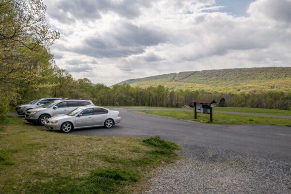 The parking area at Boyd Big Tree Preserve.