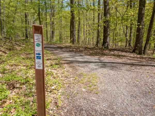 Trail marker at Boyd Big Tree Preserve near Harrisburg PA