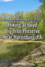 Hiking at Boyd Big Tree Preserve near Harrisburg, Pennsylvania