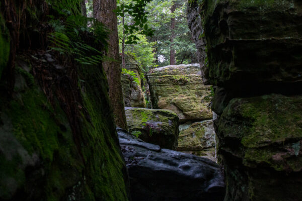 Looking through a narrow chasm at BIlger's Rock in Clearfield County PA