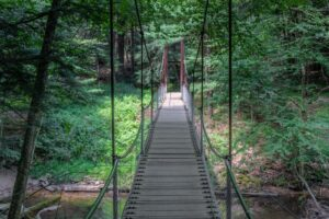 How to Get to the Swinging Bridge in Cook Forest State Park