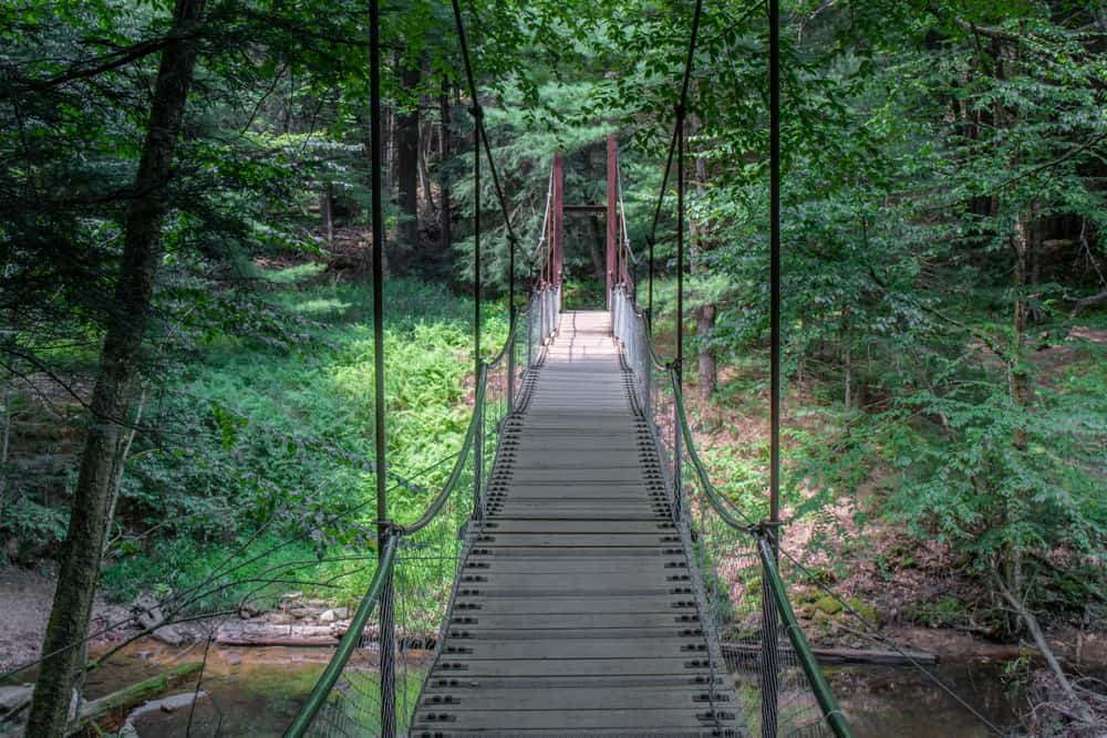 Swinging Bridge in Cook Forest State Park in Pennsylvania