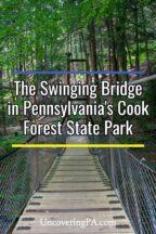 Swinging Bridge in Pennsylvania's Cook Forest State Park