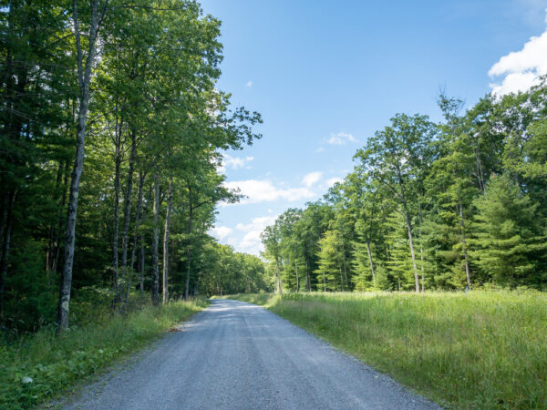 Lebo Road in Lycoming County Pennsylvania