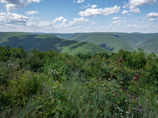PA Grand Canyon from Lebo Vista in Lycoming County