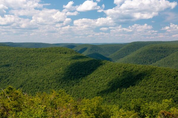 Lebo Vista in Lycoming County, PA