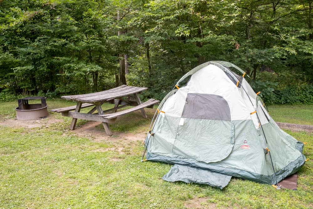 Tent camping at Ole Bull State Park in Potter County PA