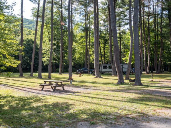 Campground at Ole Bull State Park in Potter County PA
