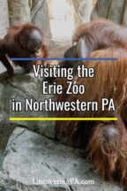 Erie Zoo in Pennsylvania