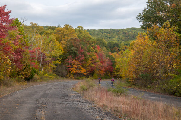 The Abandoned PA Turnpike in the Autumn