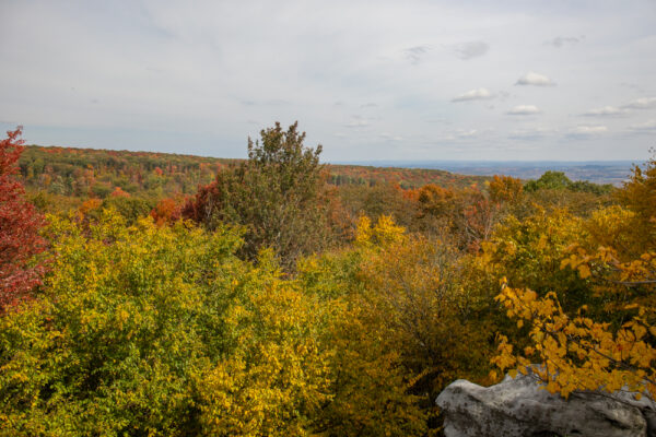 View from Beam Rocks in Somerset County Pennsylvania
