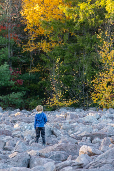 Boy exploring the boulder field in Hickory Run State Park