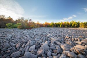 Exploring the Boulder Field in Hickory Run State Park: Everything You Need to Know