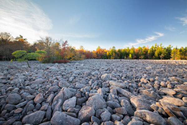 Boulder field in Hickory Run State Park in Pennsylvania