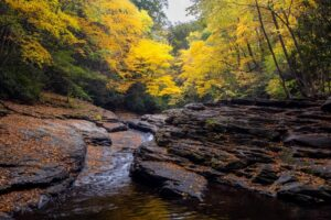 15 of the Most Beautiful Spots to See Fall Foliage in the Laurel Highlands