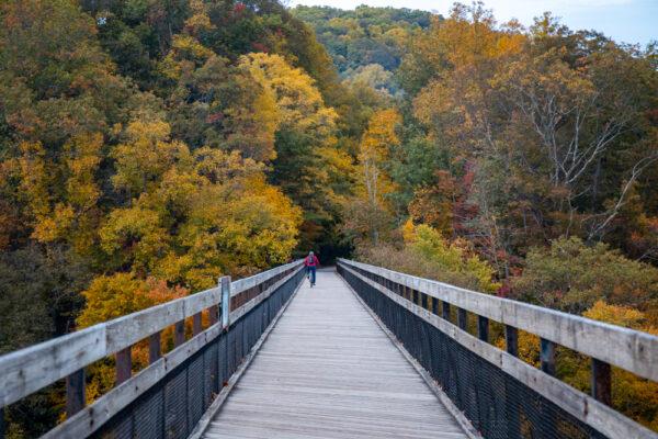 Man biking Great Allegheny Passage in the fall
