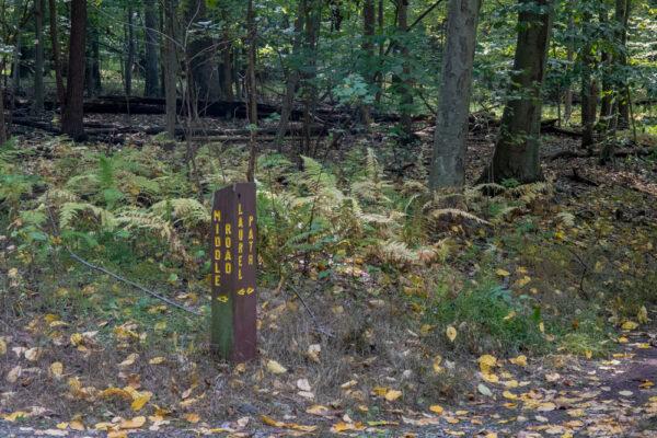 Trail marker in Nolde Forest near Reading Pennsylvania