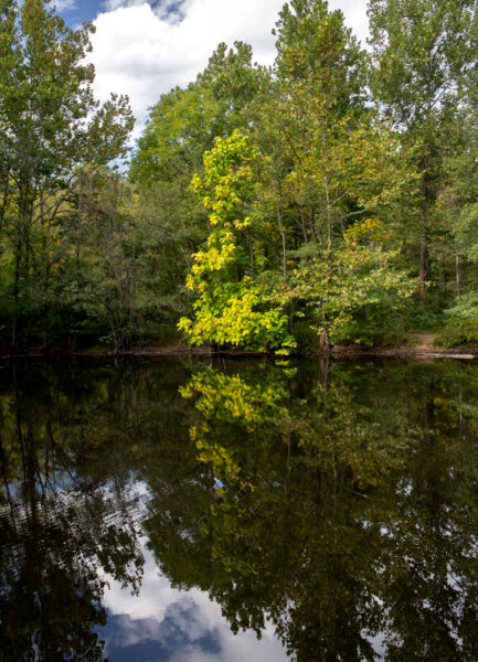 Pond at Nolde Forest Environmental Education Center in Berks County PA
