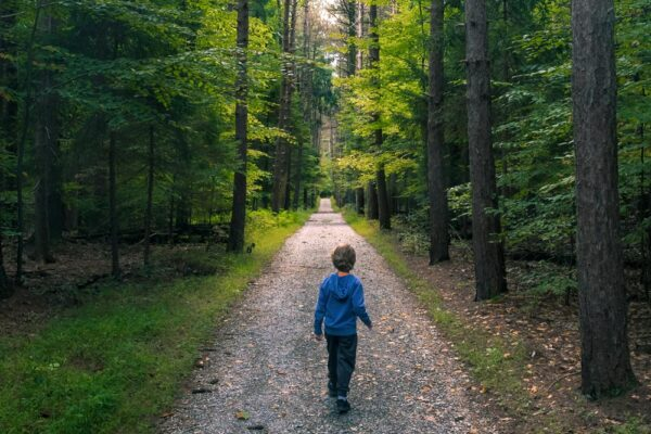 Boy Hiking in Nolde Forest in Berks County PA