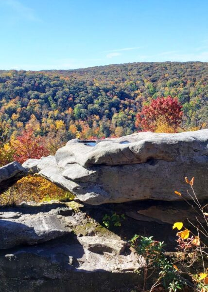 Wolf Rocks in Forbes State Forest
