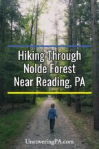 Hiking in Nolde Forest in Reading, Pennsylvania
