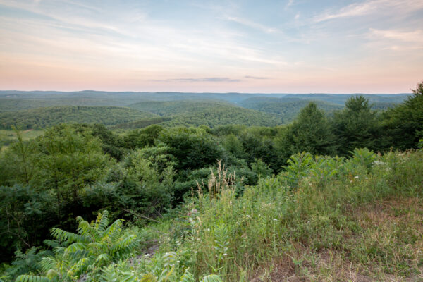 The view from Boone Run Vista in Potter County PA