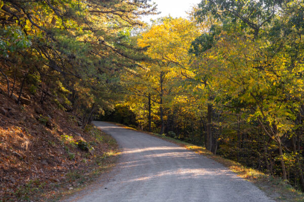 Colerain Road through Rothrock State Forest in PA