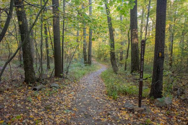 Yellow Arrow Trail in Huntingdon County Pennsylvania