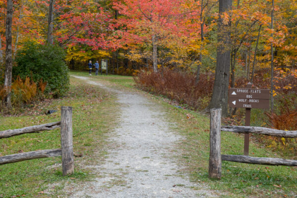 The trailhead for the Spruce Flats Bog Trail in Laurel Summit State Park in PA