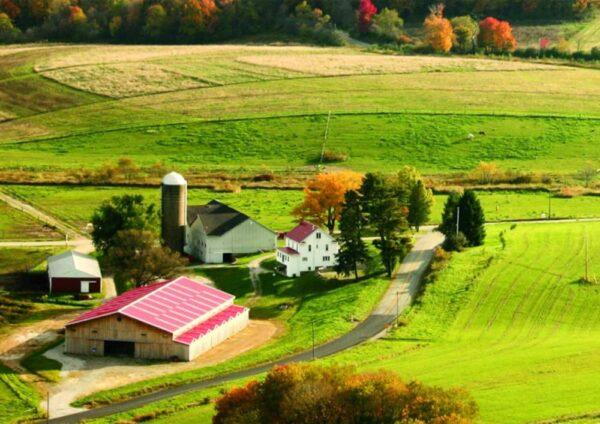 Farm stay in the Laurel Highlands