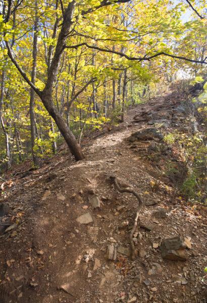 Trail to Chimney Rocks in Hollidaysburg PA