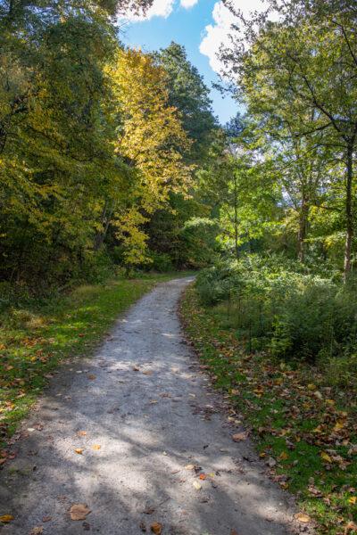 Fall on the Nine Mile Run Trail in Pittsburgh, Pennsylvania